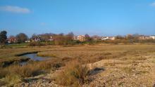 The Essex Coast at Mersea. Photo: Essex Wildlife Trust